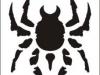 spider_201