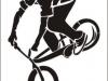 bike_47